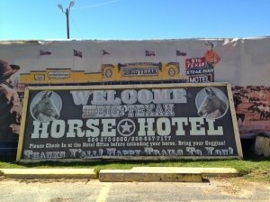 Horses Welcome