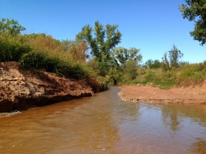 A flowing creek in Palo Duro Canyon is an ephemeral site.